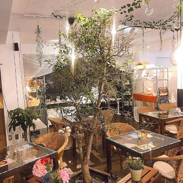 SiO cafe Rujie(金町店)店内風景2